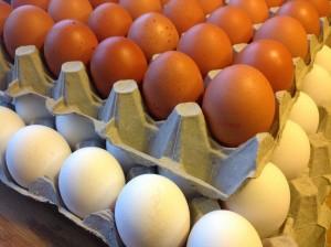 Råvaruguide för Ägg