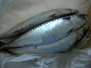 Råvaruguide för Fisk