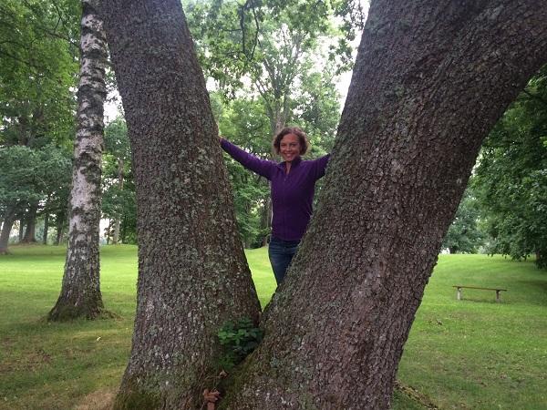 Jenny träd