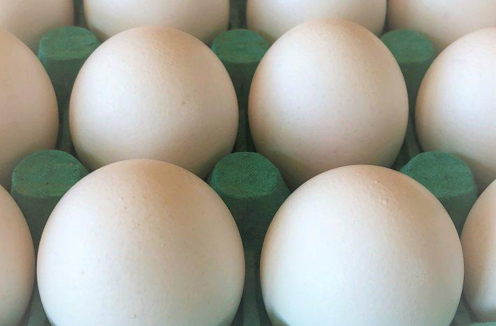Ett flak med ägg