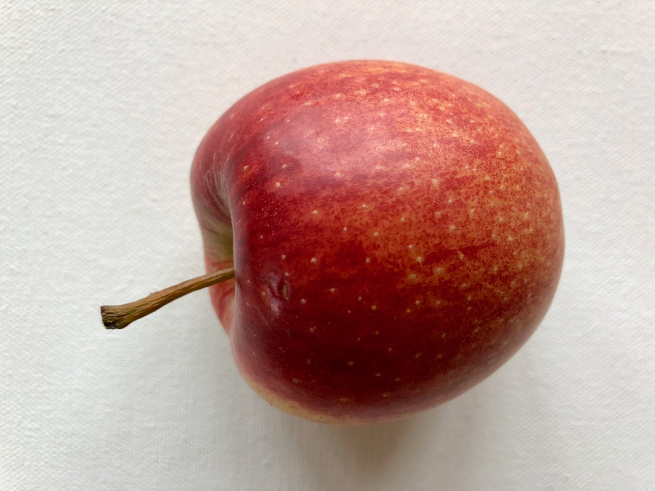 Bilp på ett äpple