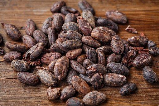 Torkade kakaobönor utspridda på ett bord, raw kakao